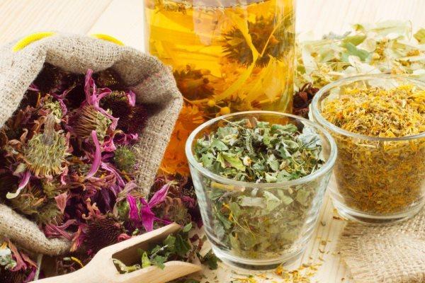 Картинки по запросу статьи о лечении травами